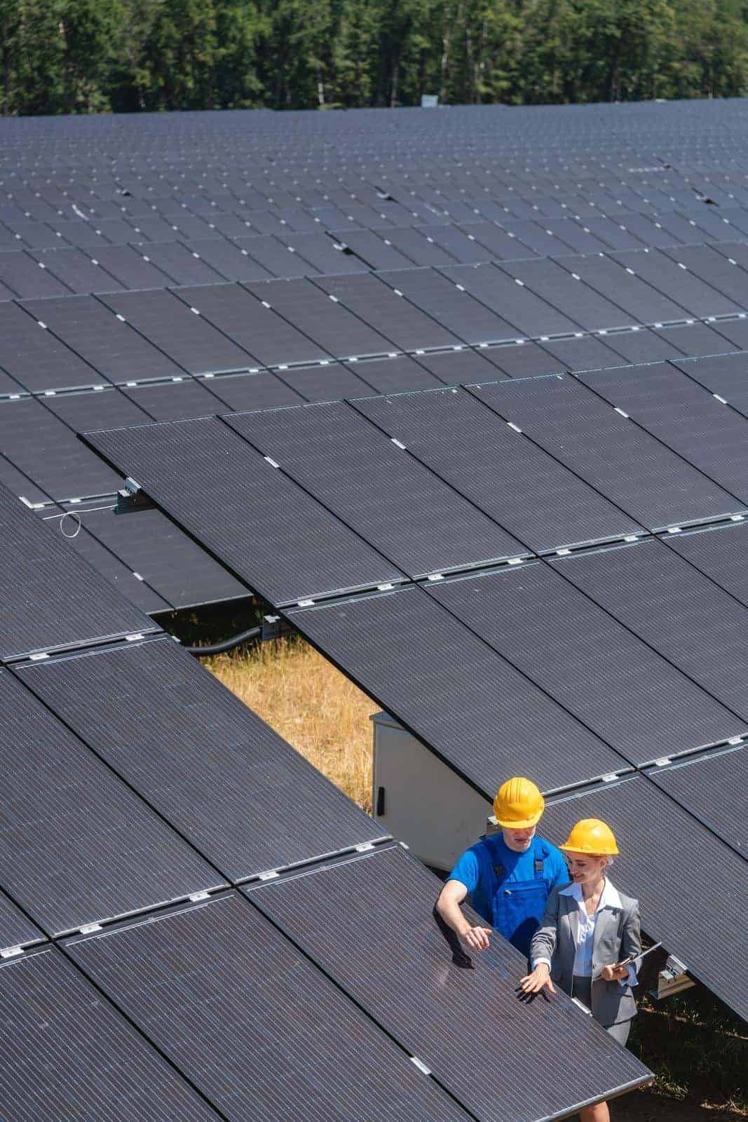 36272190_two-people-standing-amid-solar-cells-in-a-power-plant (1)
